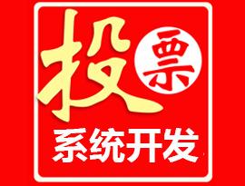 邯郸投票系统制作
